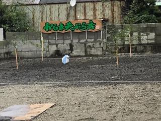 新本社工場.jpeg